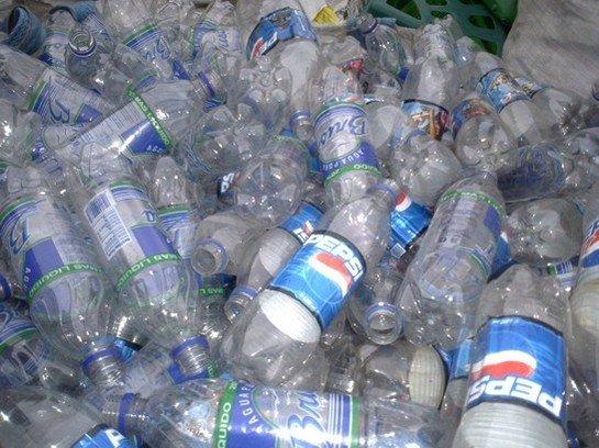 Buy Pet bottle scrap