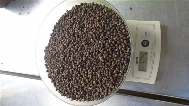 Buy  Black Pepper 550gl