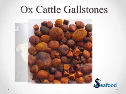 Buy OX AND CATTLE GALLSTONES FOR SALE