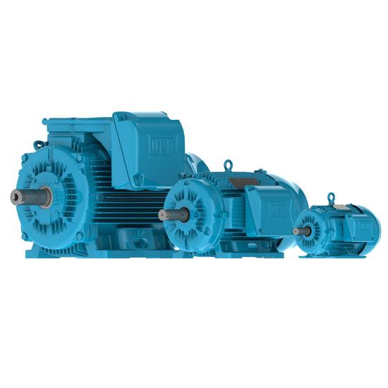 Buy Three-Phase: W22 IE3 IEC Tru-Metric - TEFC (IP55) Cast Iron Frame