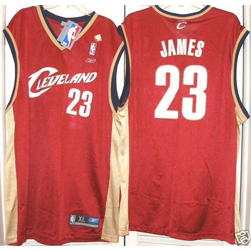 the best attitude 8dae4 3562c Reebok NBA Authentic Cleveland Cavaliers Lebron James Away ...