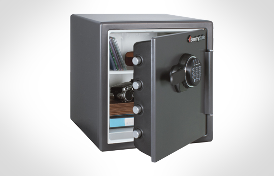 Buy Electronic FIRE-SAFE® -SF123ES