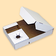 Buy Generic Pizza Boxes
