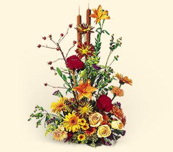 Buy Season of Wonder Bouquet