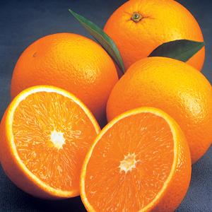 Buy Pineapple Oranges