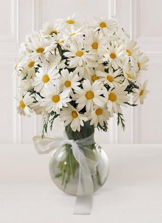 Buy The FTD® Daisy Vase C12-3005