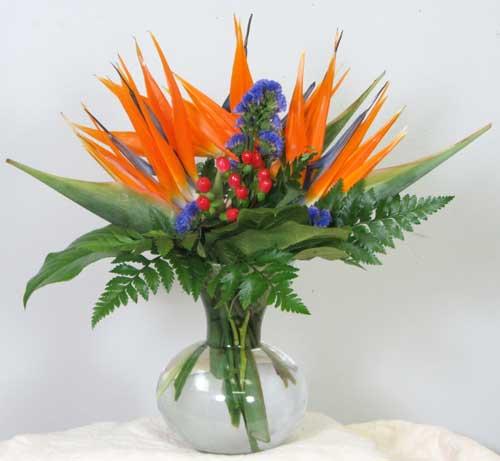 Buy Birds of Paradise Floral Arrangement
