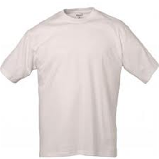 Buy Promotional t-shirts