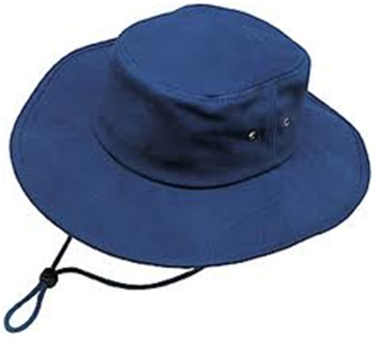 Buy Promotional hats