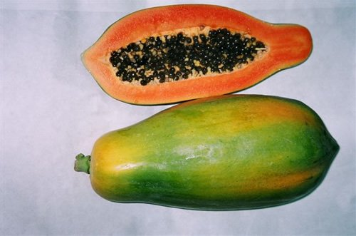 Buy Papaya, Tainung No. 1