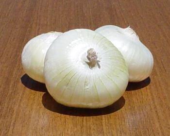 Buy Onion, Crystal White Wax