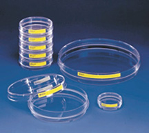 Buy Tissue Culture Petri Dishes TP93040