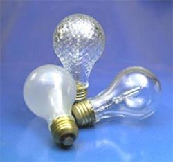 Buy General Purpose Halogen Lamps