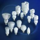 Buy DULUX ® EL Compact Fluorescent Lamps