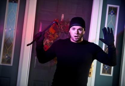 Buy Burglar Detection and Control