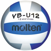 Buy Molten's Lightweight Official Youth USA Volleyball # VB-U12 in Blue / White / Silver