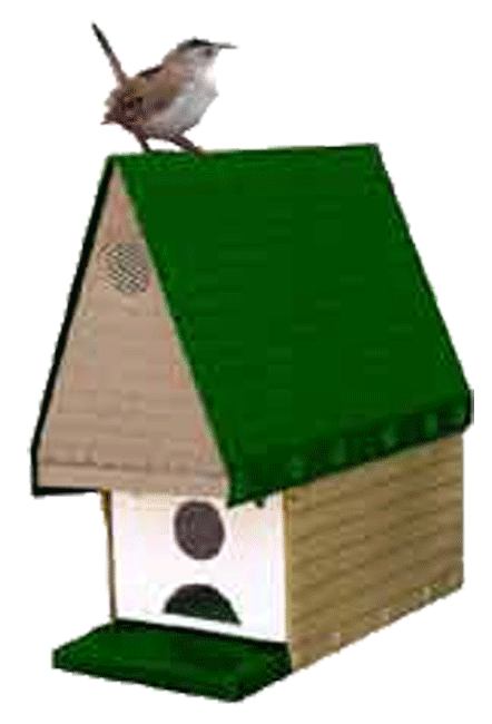 Buy Window Nesting Bungalow House