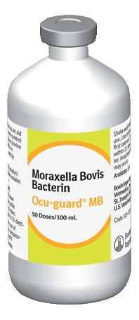Buy Ocu-Guard MB-1 Moraxella Bovis Bacterin