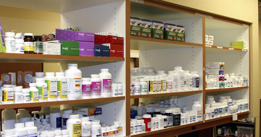 Buy Pharmacy Services