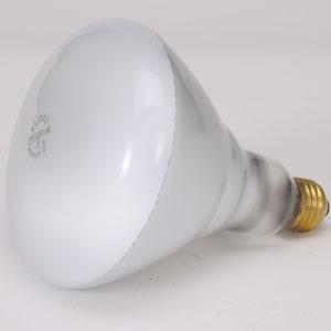 Buy Lamps Incandescent