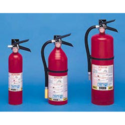Buy ProLine™ Tri-Class Dry Chemical Fire Extinguisher