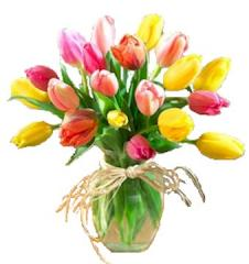 Spring Tulips FE-88