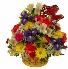 Colorful Flower Basket FE-93