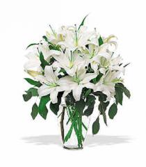 Perfect White Lillies Bouquet STF24-1