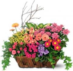 Deluxe European Garden Basket TF125-1