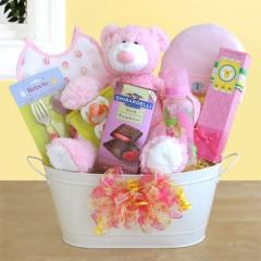 Welcome to the World Baby Girl Gift Set