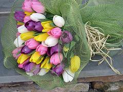 Tulip Bunch Specialty Wrap