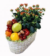 Fruit and Flowering Basket