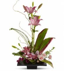 Imagination Blooms with Cymbidium Orchids Floral