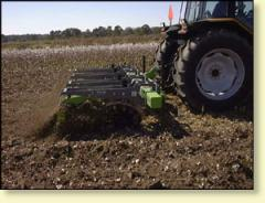 Cotton Stalk Puller