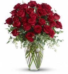 30 Long Stemmed Red Roses T255-4A