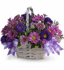 Daisy Daydreams Flower Basket T11Z105A