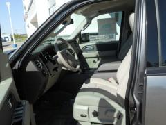 Ford Expedition Cloth Buck SUV