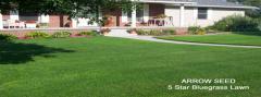 Turf Grass Range