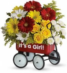 Baby's Wow Wagon by Teleflora T97N400A