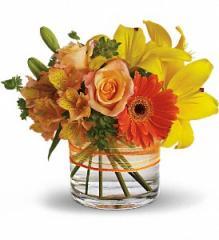 Sunny Siesta Floral Arrangement T157-3A