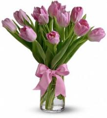 Precious Pink Tulips T11Z106A