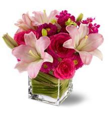 Teleflora's Posh Pinks Bouquet TFWEB147