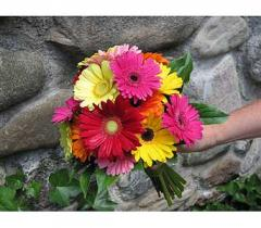 Grand Gerbera Daisy Hand Tied Bouquet
