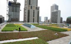 Hybrid Green Roof System