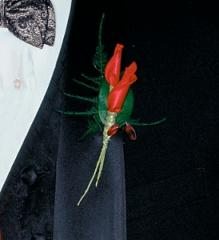 Red Rose Petals Boutonniere