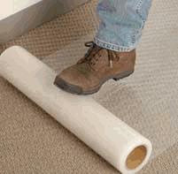 Carpet shield