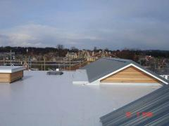 Single-Ply Roofing System