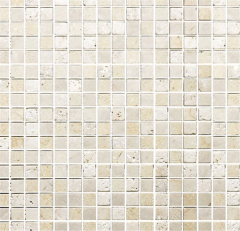 FTIMS631M1 Mosaics