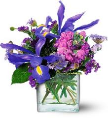 Blues for You Flower Arrangement TF16-2