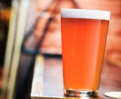 Raspberry Lager Beer